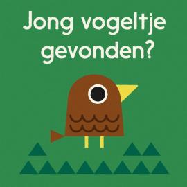Birdnerd NL